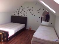 2 twin room, Canary Wharf Poplar All Saints zone 1/2