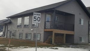 2 Bedroom/ LOWER LEVEL DUPLEX with ATTACHED  GARAGE