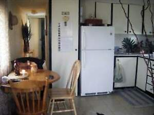 Furnished, one bedroom mobile home-cat friendly- avail 15 August