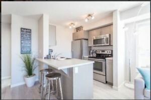 3 bed 2 bath apartment, 1/2 month free Move in Aug 15