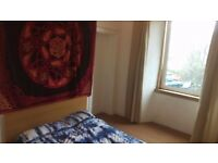 Bright, clean, central double room for festival let