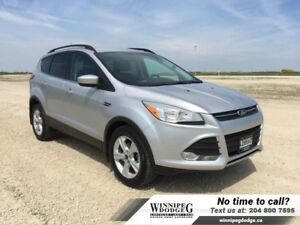 2014 Ford Escape SE w/Leather  Navi *LOCAL*