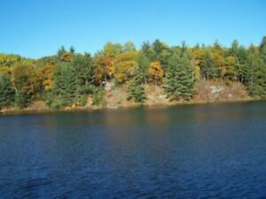 LAKEFRONT WAKEFIELD 3-BED, 2-BATH COTTAGE 35K OTTAWA! DOG OK!