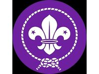 Wanted old scout badges / uniform /