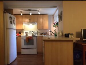 Large 4 1/2 furnished sublet for last 2 weeks of August in NDG