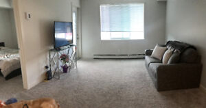 Beautiful 1 bedroom pet friendly Apartment -Avail Sept 1