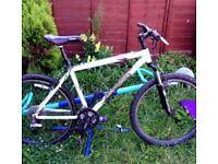 Gary Fisher hardtail mountain bike