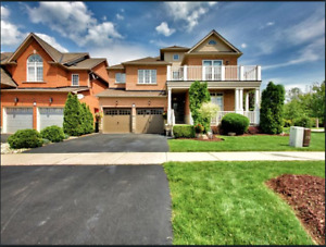 OPEN HOUSE THIS WEEKEND - Stunning Fifty Point Detach Home