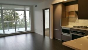 Burnaby Metrotown 'Met 2' Brand New 2 bedroom Apartment For Rent