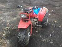 Honda 125 trike
