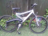 Specialised Mountain Bike
