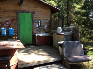 Seculided private cabin .creek with lake acess bring only food,