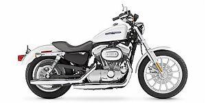 Harley Davidson XL883L Sportster - LOW KM!!