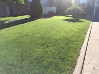 Professional Lawn Maintenance, Call Today!