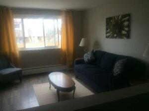 FURNISHED  apts avail for short term stays