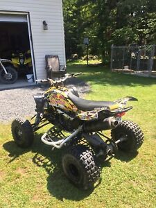 Can-Am DS 450 2013