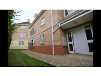 Modern two bed ground floor apartment to rent, available immediately