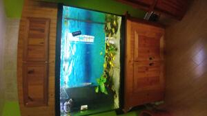 Aquarium 110Gallon percé avec décante et meuble