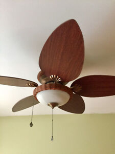2 Perfectly fine ceiling fans with lighting-I can sell seperate.