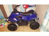 110cc quad thundercat
