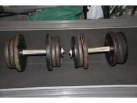 50kg dumbbells / dumbells set, each one is 25kg (rubber covered cast iron weights, commercial gym)