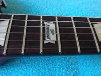 Gibson LPJ - 120th Anniversey Model (Sell or Trade)