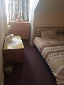 One double bedroom to share in Luton