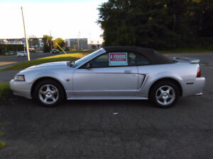 2004 Ford Mustang Autre