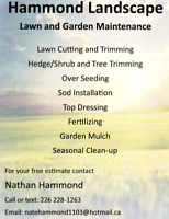 Lawn maintenance and gardens and more call now !