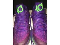 Kd 8 purple and green
