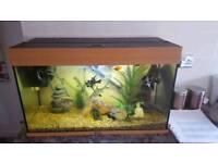 Jewel fishtank and stand