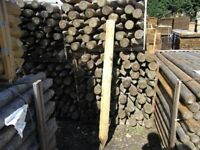 Timber fence post 100mm-125mmx1.65m