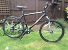 Men's Apollo XC26S mountain bike alloy frame 20""