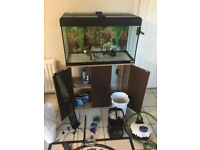 120l fish tank and cabinet for sale