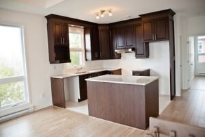 2 and 3 bedroom luxuary condo sept and oct 1