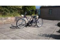 Trike with adapted support for 8years+ theraplay TMX model