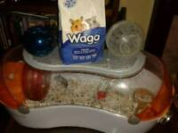 Dwarf female hamster + cage + accesories +food for sale
