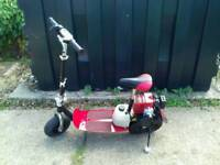 Go ped 50 cc scooter