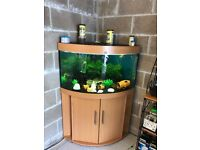 190l Juwel corner fish tank v g c full set up with stand filter heater 2 x t5 light both work pump