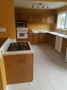 3 bedroom 1/2 duplex for rent Sept.1 or immediately