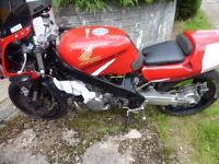 Honda NTV 700 Track or Road Bike