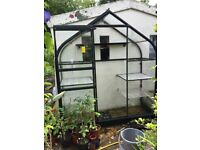 Halls Supreme Wall Garden lean-to in forest green 6ft 3 x 2ft 3