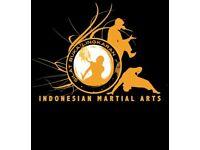 Silat Buka Lingkaran - Beautiful, dynamic and effective martial art