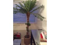 Imitation palm tree