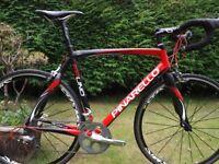 Pinerello FP UNO Road Bike - Lovely Condition 56cm