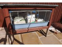 rabbit hutch and cage