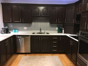 Kitchen cabinets - double sink - taps - handles $2500.00
