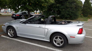 2003 Ford Mustang Cabriolet - 5 vitesse manual