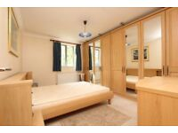 INCREDIBLE room in MILE END ** Double, En suite call now !! CRAZY DISCOUNT **