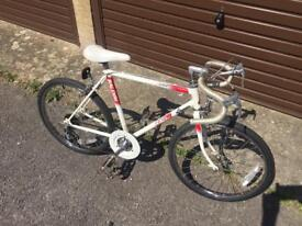Kids Raleigh Racer. Serviced, Great Condition, Free Lights & Delivery